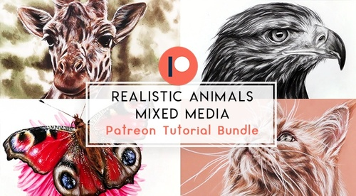 Realistic Animals in Coloured Pencil- Mixed Media