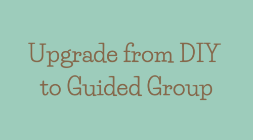 Upgrade from DIY to Guided Group