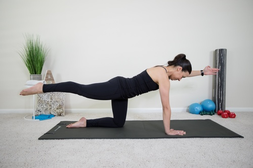 Prenatal Pilates (Weeks 14-37)