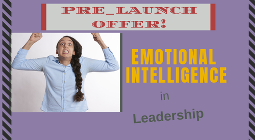 Emotional Intelligence for Effective Leadership