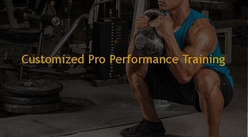 Customized Pro Performance Training Solutions