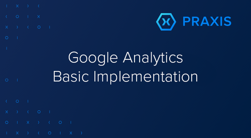 Praxis Metrics Analytics Audit Implementation Course