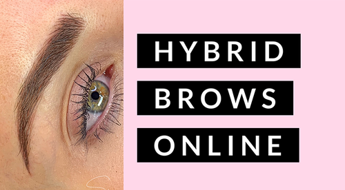 Hybrid Brows | Microblading and Machine Shading | Shay Danielle Academy Online