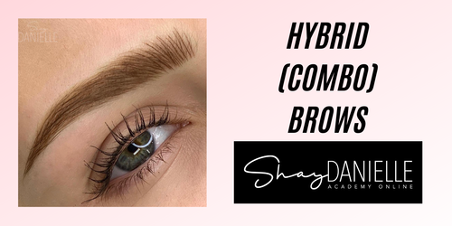 Hybrid Brows | Microblading and Machine Shading