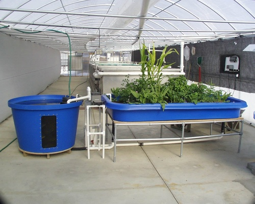 Construcción de Hidrotecnias (Bio piscinas, acuaponia, hidroponía y forraje hidropónico)