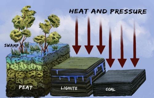 Coal Quality Basics