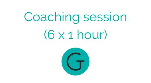 The Tutor Gurus Coaching sessions (6 x 1 hour)