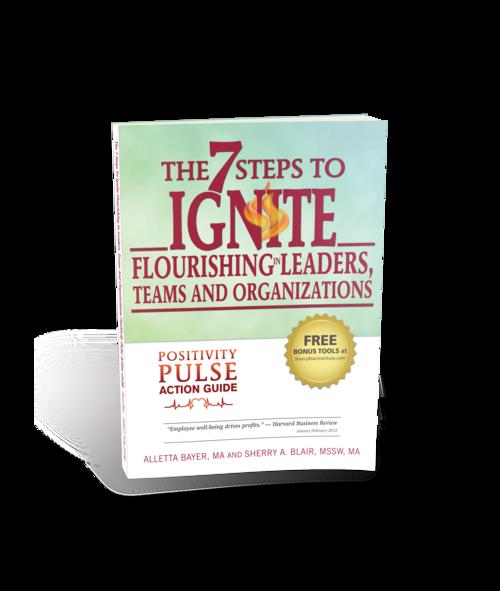 IGNITE 7 Steps to Ignite Flourishing in Leaders, Teams & Organizations