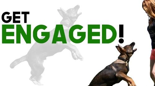 Get Engaged!