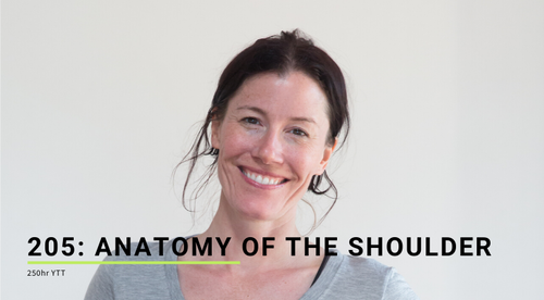205: Anatomy of the Shoulder