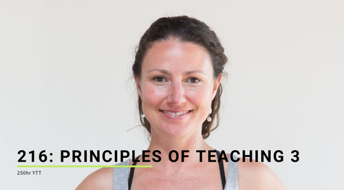 216: Principles of Teaching 3