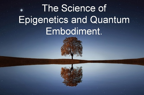 The Science of Epigenetics and Quantum Embodiment. Your Path to Super Immunity
