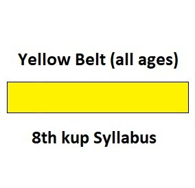 Yellow Belt 8th Kup Syllabus (all ages)