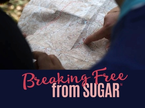 Breaking Free from Sugar HOLIDAY EDITION Starts Nov 4th, 2019