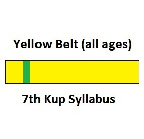 Yellow Belt 7th Kup Syllabus (all ages)