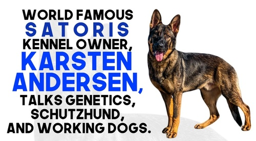 World famous Satoris Kennel owner, Karsten Andersen, talks genetics, Schutzhund, and working dogs.