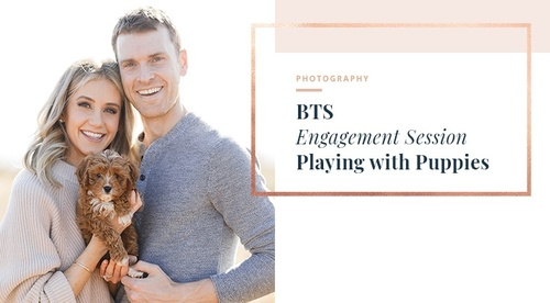 BTS -Playing with Puppies