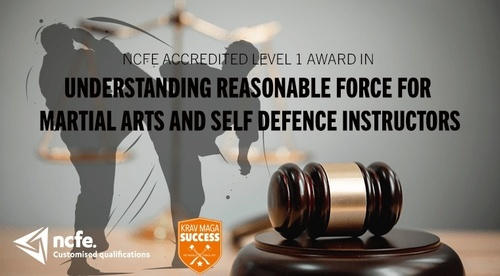 Understanding Reasonable Force  for Martial Arts and Self Defence Instructors