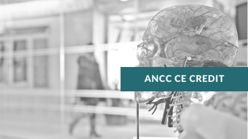 The Brain and the Disease of Addiction (BDA) — ANCC 2.0 CE Credits