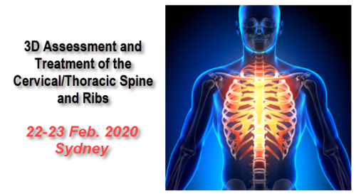 3D Assessment & Treatment of the Cervical Spine, Thoracic Spine and Ribs (Sydney 22-23 Feb 2020)