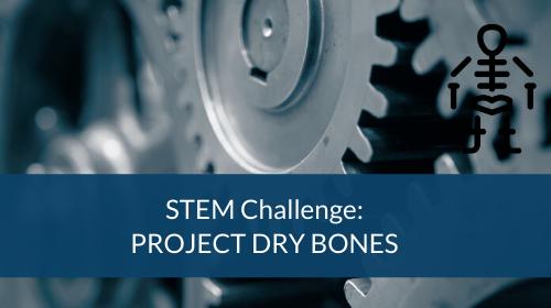 STEM Challenge - Project Dry Bones