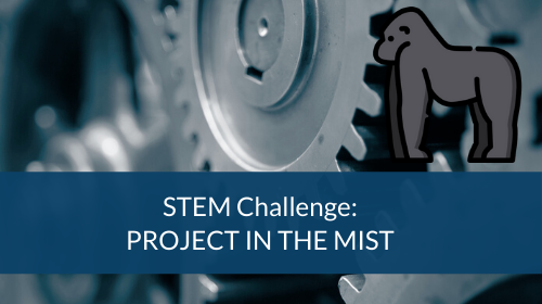 STEM Challenge - Project In The Mist