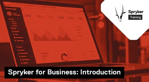 Spryker for Business Introduction