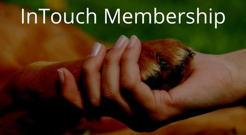 InTouch with Dogs: The Membership