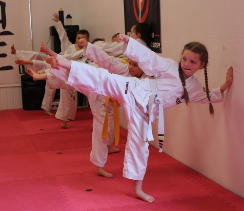 TKD Covid-19 lockdown videos 4-Direction Punch Practice for the kids and adults