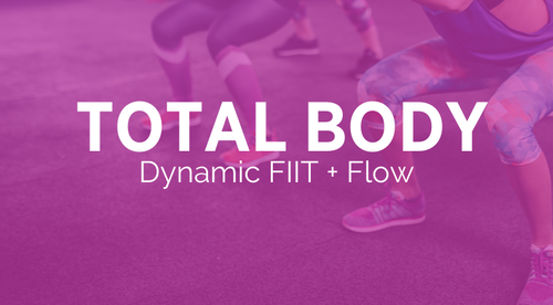 Dynamic FIIT + Flow Bundle