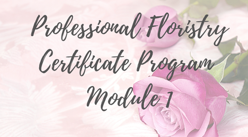 Professional Floristry Certificate  Programme - Module 1 - 29th  May