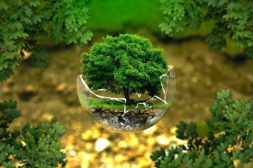 ISO 14001:2015 Environmental Management System Awareness