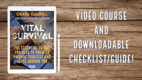 Vital Survival: The essential things you need to know to prepare yourself and those around you.