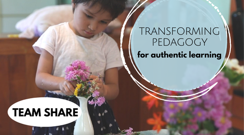 Transforming pedagogy for authentic learning: TEAM eLEARNING PACKAGE