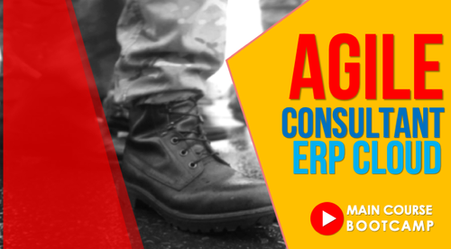 Agile Consultant : ERP Cloud Bootcamp - Main Course (on-demand)