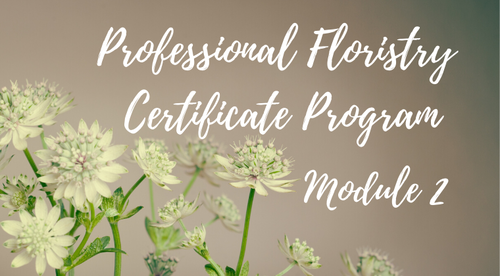 Module 2 - Professional Online Floristry Program -  October 7th