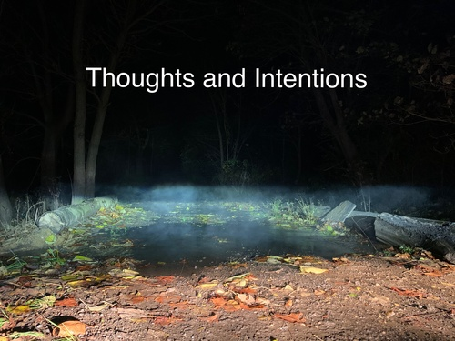 Thoughts and Intentions