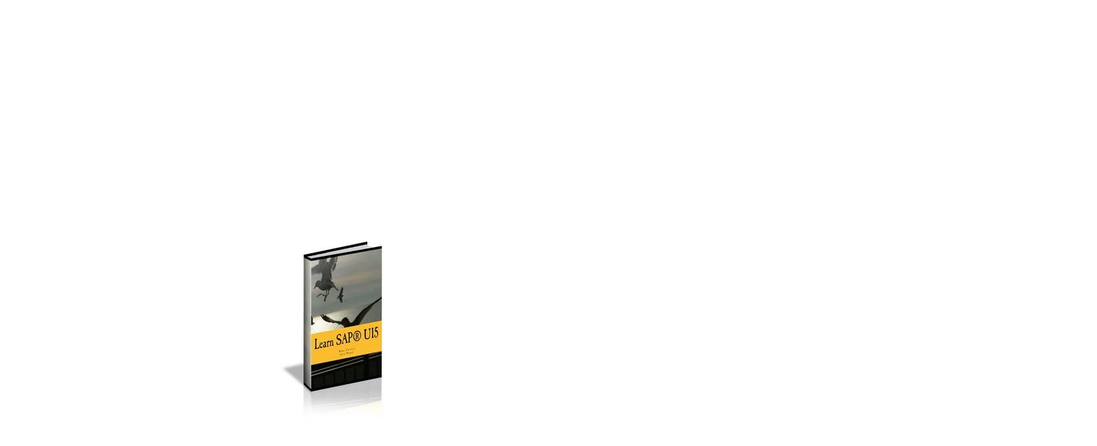 Learn sap ui5 professional development e book learn sap ui5 professional development e book fandeluxe Image collections