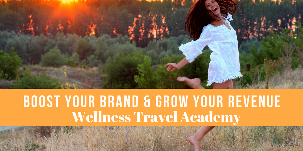 Wellness Travel Online Training