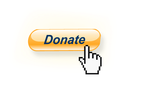 Image result for donate paypal button