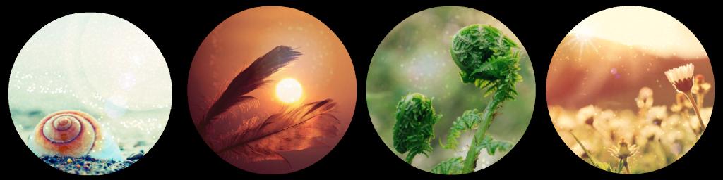 Wonder Camp landscape collage