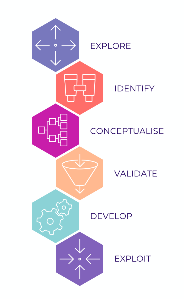 The six seps of the innovation process: Explore, Identify, Conceptualise, Validate, Develop, Exploit