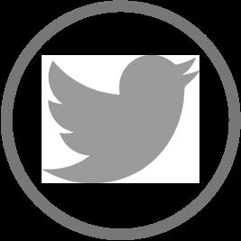 Button: Share on Twitter