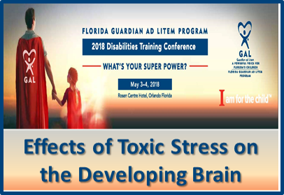 Exposure To Toxic Stress In Childhood >> 2018 Gal Disabilities Training Conference