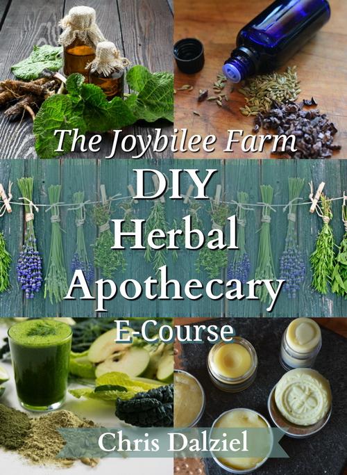 Diy Herbal Apothecary