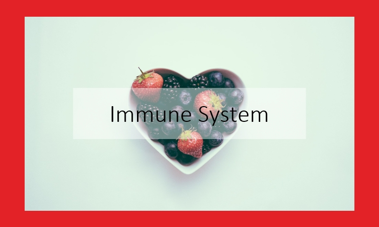 strengthen your immune system audio course