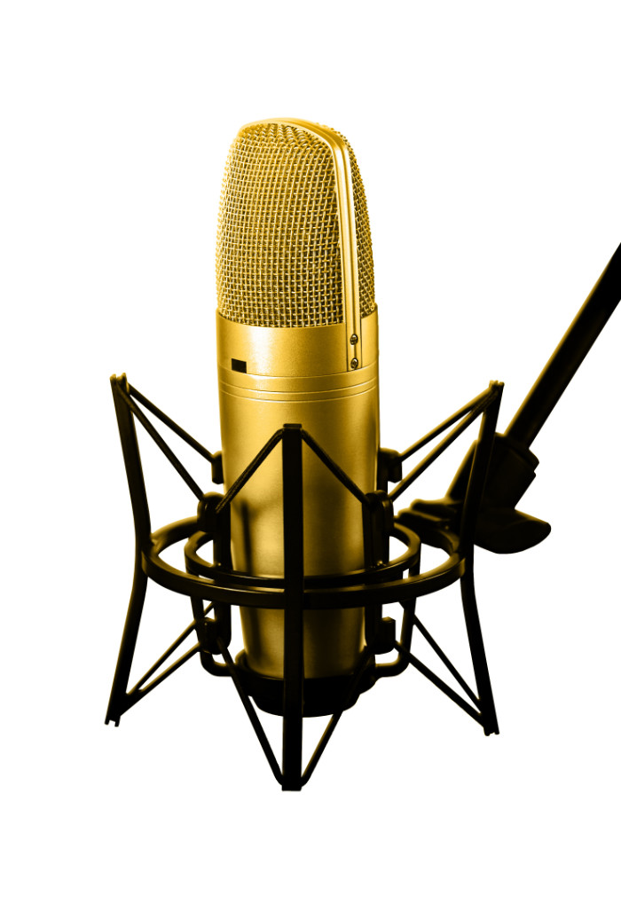 what microphone for voiceover