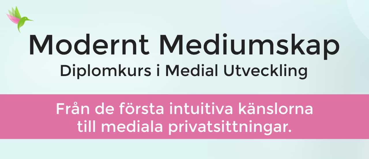 Mediumutbildning