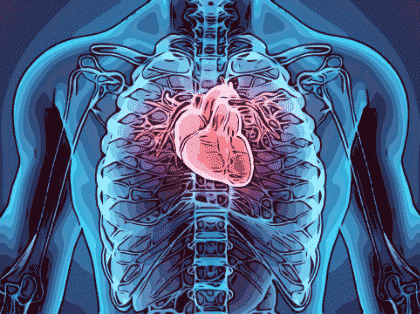 Cardiology Rendered Graphic