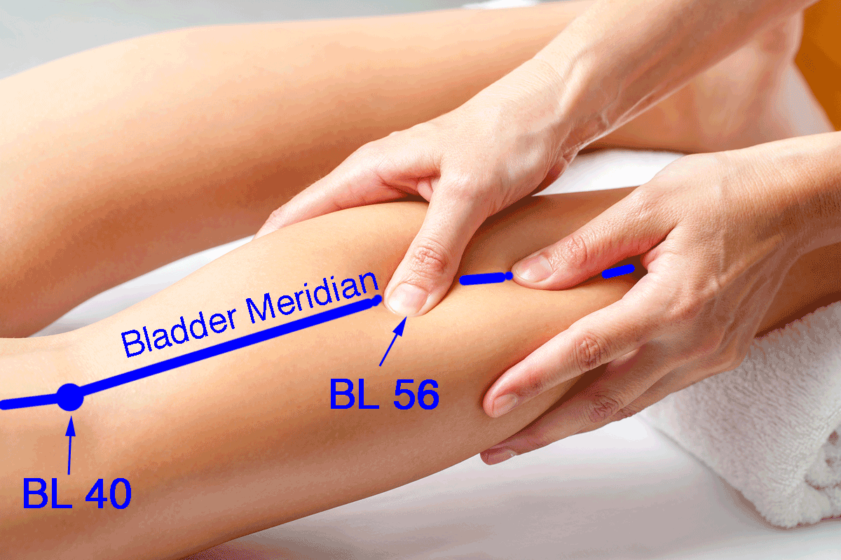 hands-on healing, bladder meridian